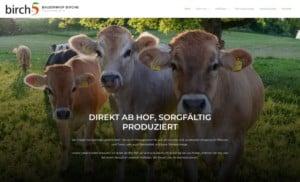 www.birch5.ch